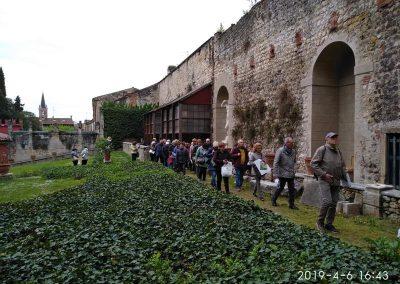 Verona 10 bis